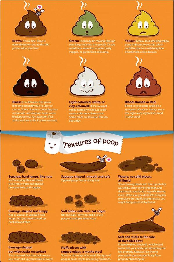 Diagnosis of Chronic Diarrhea