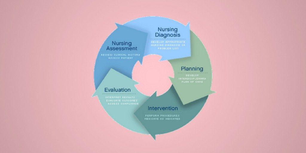apie nursing process