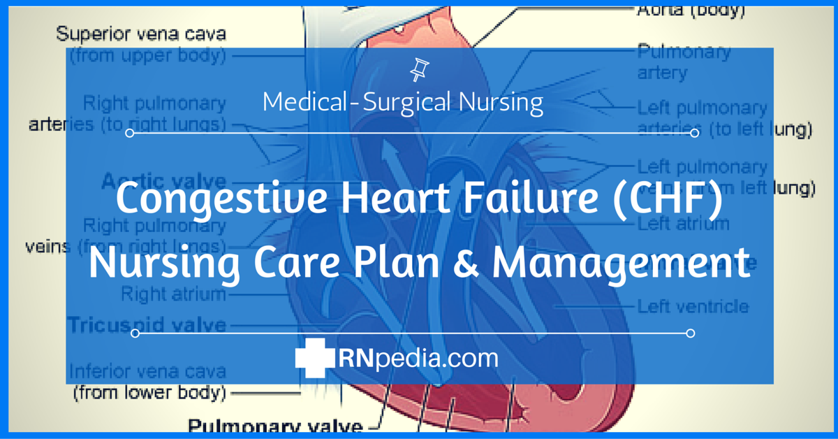 congestive heart failure chf nursing care plan management