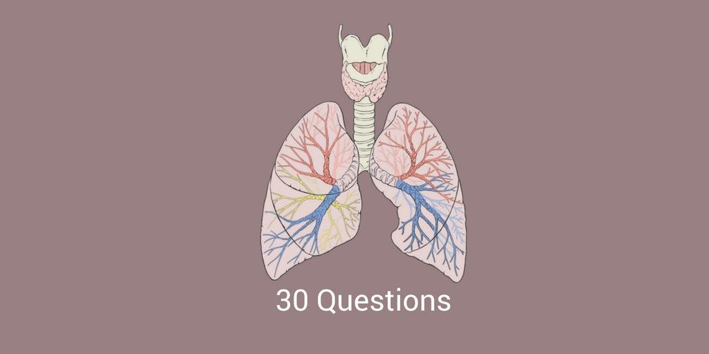 NCLEX Practice Exam For Respiratory System 3 RNpedia