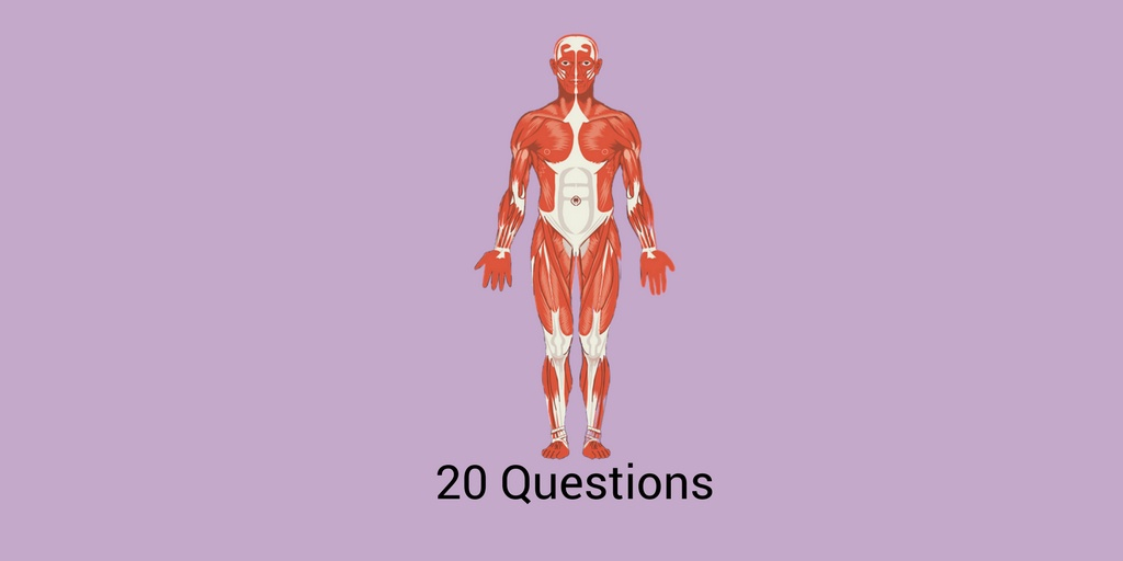 Nclex Practice Exam For Pharmacology Musculoskeletal Medications